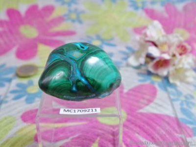 Chrysocolle-Malachite