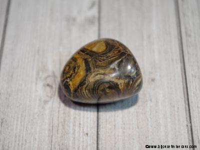 Galet Stromatolite